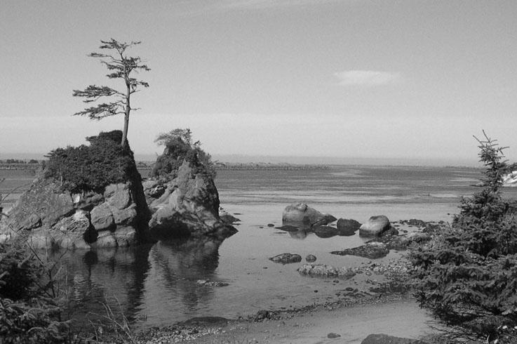 Garibaldi | Oregon Coast