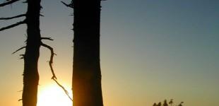 Framed Sunset | La Push, WA