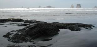 Second Beach | La Push, WA